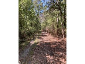 Sweetwater Fox Pen Tract | 670± Acres featured photo 4