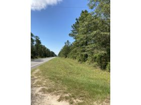 Sweetwater Fox Pen Tract | 670± Acres featured photo 11