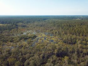 Sweetwater Fox Pen Tract | 670± Acres featured photo 2
