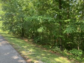 AUCTION Selling Absolute - 1.78+/- Vacant Lot For Sale in Mountain Harbour Greens Subdivision - Near Center Hill Lake! - 155 Harbor Green Pl featured photo 4