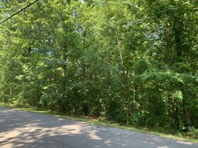 AUCTION Selling Absolute - 1.78+/- Vacant Lot For Sale in Mountain Harbour Greens Subdivision - Near Center Hill Lake! - 155 Harbor Green Pl featured photo 6