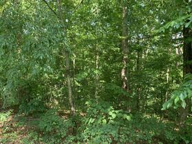 AUCTION Selling Absolute - 1.78+/- Vacant Lot For Sale in Mountain Harbour Greens Subdivision - Near Center Hill Lake! - 155 Harbor Green Pl featured photo 7