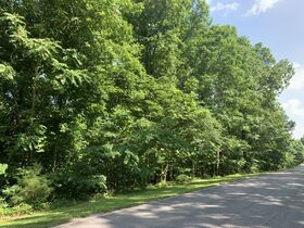 AUCTION Selling Absolute - 1.78+/- Vacant Lot For Sale in Mountain Harbour Greens Subdivision - Near Center Hill Lake! - 155 Harbor Green Pl featured photo 8