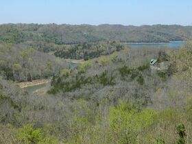 AUCTION Selling ABSOLUTE! 3.38+/- Acres in Chapel Hill Subdivision For Sale with Utilities Available - Near Center Hill Lake at Coconut Ridge Rd. featured photo 12