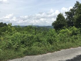 AUCTION Selling ABSOLUTE! 3.38+/- Acres in Chapel Hill Subdivision For Sale with Utilities Available - Near Center Hill Lake at Coconut Ridge Rd. featured photo 9