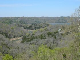 AUCTION Selling ABSOLUTE! 3.38+/- Acres in Chapel Hill Subdivision For Sale with Utilities Available - Near Center Hill Lake at Coconut Ridge Rd. featured photo 10