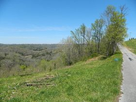 AUCTION Selling ABSOLUTE! 3.38+/- Acres in Chapel Hill Subdivision For Sale with Utilities Available - Near Center Hill Lake at Coconut Ridge Rd. featured photo 2
