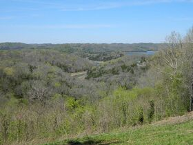 AUCTION Selling ABSOLUTE! 3.38+/- Acres in Chapel Hill Subdivision For Sale with Utilities Available - Near Center Hill Lake at Coconut Ridge Rd. featured photo 7