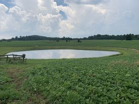 Corydon 34+ Acre Land Online Only Auction featured photo 2
