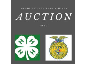 MEADE COUNTY FAIR 4-H & FFA YOUTH LIVESTOCK AUCTION - Online Bidding ends Wednesday, July 22 @ 5:00 PM EDT featured photo 1