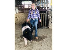 MEADE COUNTY FAIR 4-H & FFA YOUTH LIVESTOCK AUCTION - Online Bidding ends Wednesday, July 22 @ 5:00 PM EDT featured photo 4