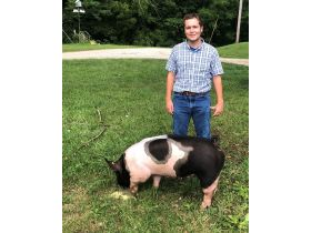 MEADE COUNTY FAIR 4-H & FFA YOUTH LIVESTOCK AUCTION - Online Bidding ends Wednesday, July 22 @ 5:00 PM EDT featured photo 6