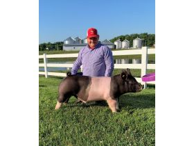 MEADE COUNTY FAIR 4-H & FFA YOUTH LIVESTOCK AUCTION - Online Bidding ends Wednesday, July 22 @ 5:00 PM EDT featured photo 8