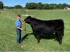 MEADE COUNTY FAIR 4-H & FFA YOUTH LIVESTOCK AUCTION - Online Bidding ends Wednesday, July 22 @ 5:00 PM EDT featured photo 9