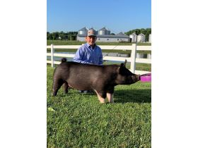 MEADE COUNTY FAIR 4-H & FFA YOUTH LIVESTOCK AUCTION - Online Bidding ends Wednesday, July 22 @ 5:00 PM EDT featured photo 11