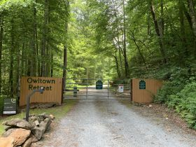 8.2± Acres | Beautiful Mountain Tract | Absolute Auction featured photo 1