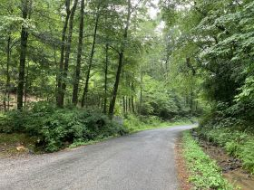 8.2± Acres | Beautiful Mountain Tract | Absolute Auction featured photo 3