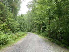 8.2± Acres | Beautiful Mountain Tract | Absolute Auction featured photo 4