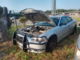 GOVERNMENT AUCTION MULTI COUNTY SURPLUS AND MORE featured photo 4