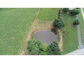 ESTATE AUCTION featuring 3 BR, 2 BA Home on 5+/- Acres with Pond featured photo 8