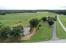 ESTATE AUCTION featuring 3 BR, 2 BA Home on 5+/- Acres with Pond featured photo 11