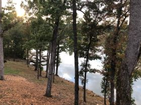 4 Deep Water Waterfront Lots On Wilson Lake featured photo 3