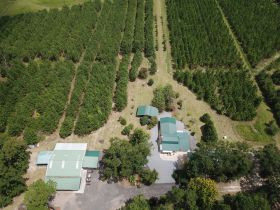 82± Acres   Home & Cabin • Offered Divided featured photo 11