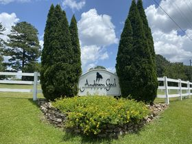 Premier Real Estate Auction - Anderson Gail Farms, Shelby, Alabama featured photo 10