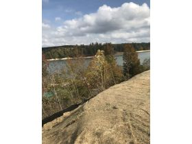 ABSOLUTE AUCTION: Smith Lake -Waterfront Residential Lot in Double Springs, AL  Unrestricted. featured photo 1