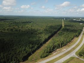 Absolute Auction | 70± Acre Development Tract | Great Location featured photo 1