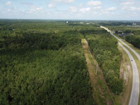 Absolute Auction | 70± Acre Development Tract | Great Location featured photo 3
