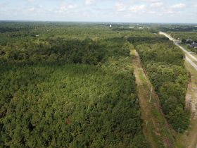 Absolute Auction | 70± Acre Development Tract | Great Location featured photo 5
