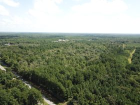Absolute Auction | 70± Acre Development Tract | Great Location featured photo 7