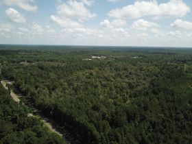 Absolute Auction | 70± Acre Development Tract | Great Location featured photo 8
