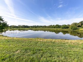 301 Acre Corydon Real Estate Online Only Auction featured photo 4