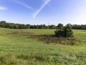 301 Acre Corydon Real Estate Online Only Auction featured photo 8