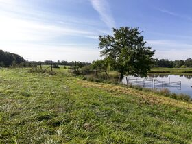 301 Acre Corydon Real Estate Online Only Auction featured photo 9