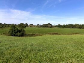301 Acre Corydon Real Estate Online Only Auction featured photo 10