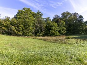 301 Acre Corydon Real Estate Online Only Auction featured photo 11