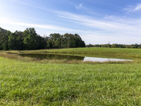 301 Acre Corydon Real Estate Online Only Auction featured photo 12
