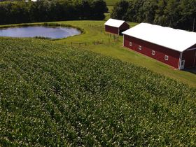 145 Acre Coshocton County Rolling Hills Farm featured photo 4