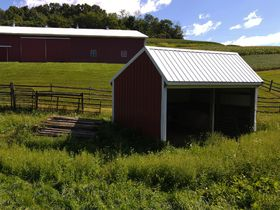 145 Acre Coshocton County Rolling Hills Farm featured photo 10