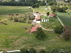 House, Barns and 91 Acres in Tracts - Tractors and Equipment at Absolute Auction featured photo 8