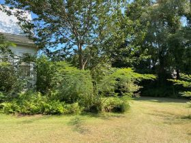 Spacious Historic Home in Grenada, MS featured photo 10