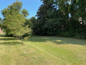 Spacious Historic Home in Grenada, MS featured photo 11