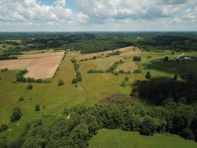 Approximately 93 Acres (Offered in 3 Tracts) of the Late Jerry Dotson at On Site Estate Auction featured photo 2