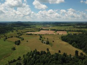 Approximately 93 Acres (Offered in 3 Tracts) of the Late Jerry Dotson at On Site Estate Auction featured photo 5