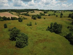 Approximately 93 Acres (Offered in 3 Tracts) of the Late Jerry Dotson at On Site Estate Auction featured photo 7