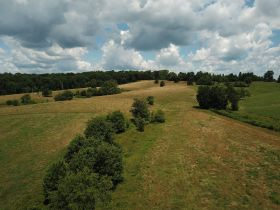 Approximately 93 Acres (Offered in 3 Tracts) of the Late Jerry Dotson at On Site Estate Auction featured photo 9