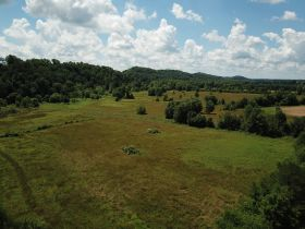 Approximately 93 Acres (Offered in 3 Tracts) of the Late Jerry Dotson at On Site Estate Auction featured photo 11